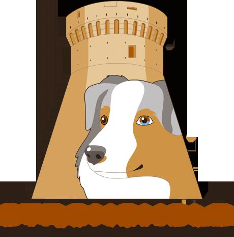 Allevamento Australian Shepherd Stronghold